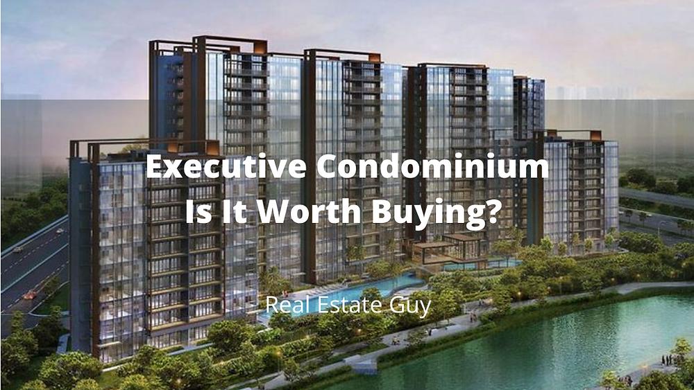 real estate guy
