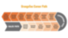 orangetee career path.png