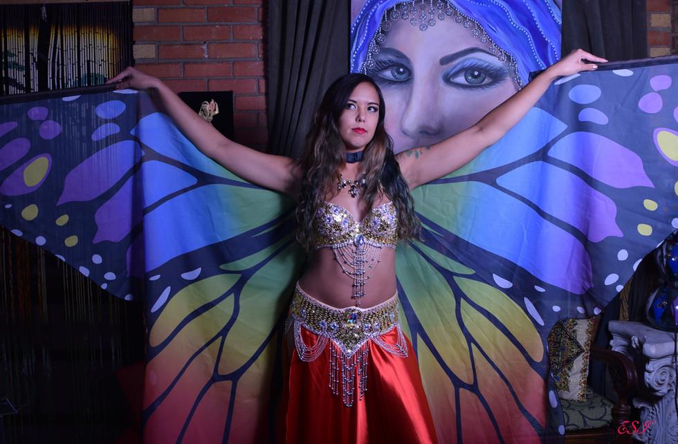 Belly Dancing Butterfly