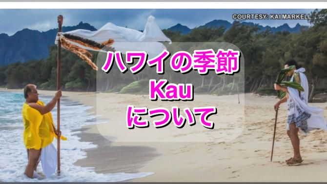 Aloha Authentic :ハワイの季節