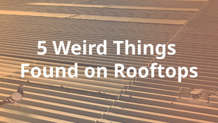 5 Weird Things Found on Rooftops