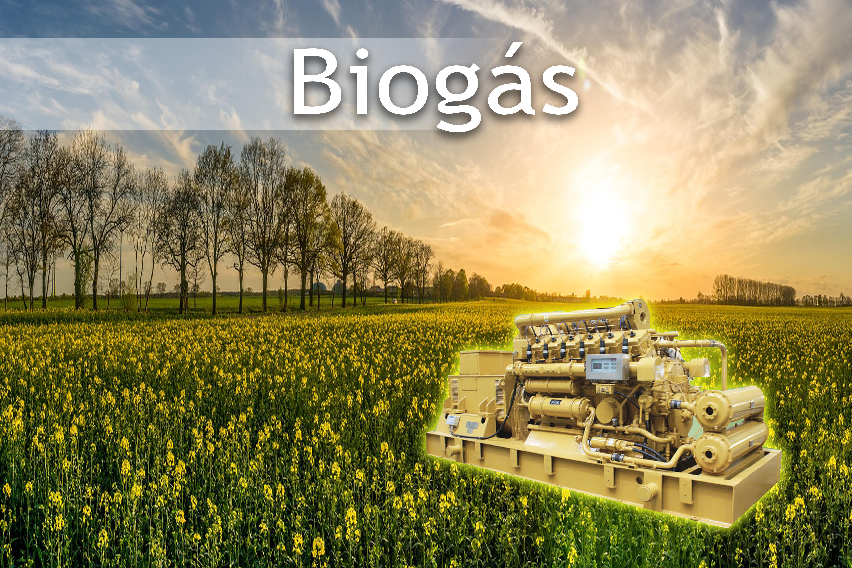 Gerador a Biogás