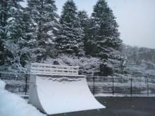 またも東京は雪!