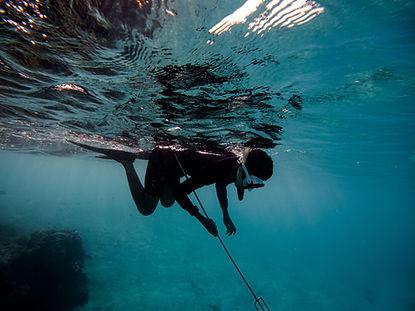 Pesca sub 1.jpg