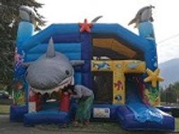 structure gonflable requin château