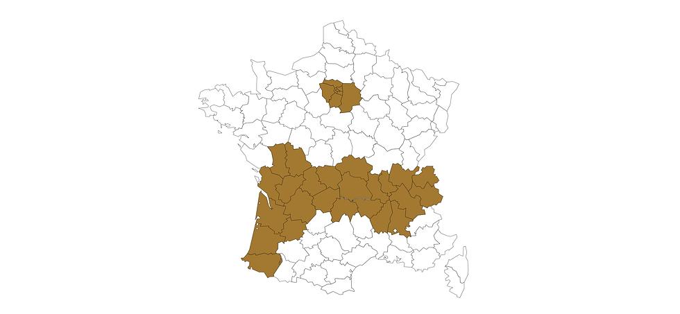 CARTE DE FRANCE-1.png