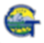gt logo 08-20-2018.png