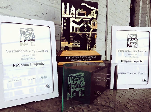 ReSpace Sustainable City Awards 2019.JPG