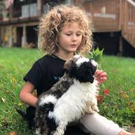 Vylee Emerson puppy whisperer extraordin