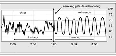 grafiek.png