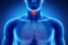 Clinica de Acupuntura Tratamento Tiroide Lisboa e Montijo