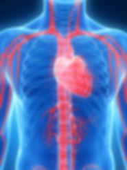 Clínica Acupuntura para Tratamento Coração Lisboa e Montijo
