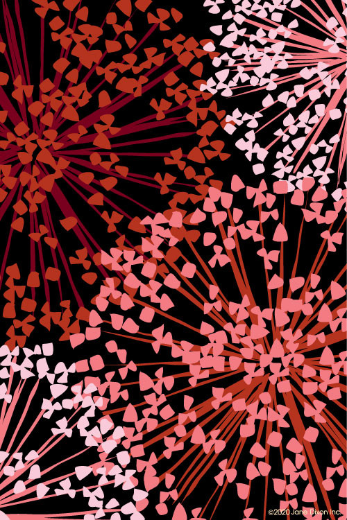 JaneDixonLAN5105b.jpg