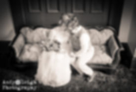 Evansville, photobooth, photo booth, DJ, karaoke, photography, entertainment, wedding, event