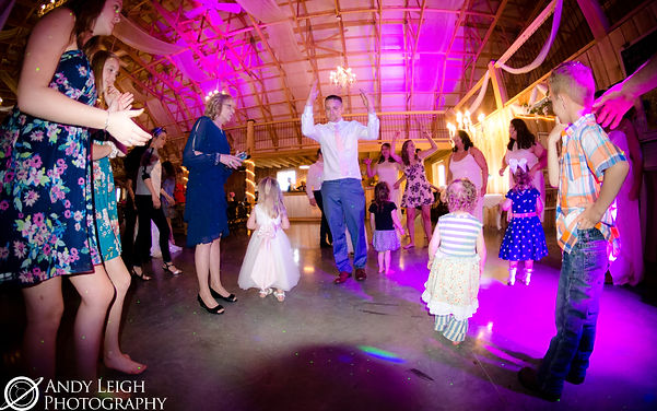 Evansville, DJ, Karaoke, Photobooth, Photo booth, Photography, wedding, event, party