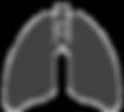 aupuncture for allergies