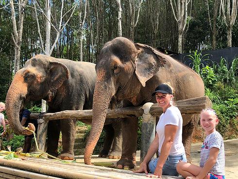 Tills & Lyns Elephants.jpg