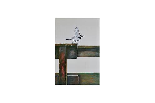Original - Acrylbild 40x60 cm - Vogel am Selenter See