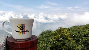 Voyage autour du café de Colombie