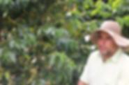 Caféiculteur-Jardin-Colombie