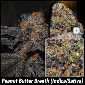 Peanut butter breath details email.jpg