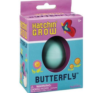 Hatchin' Grow Butterfly