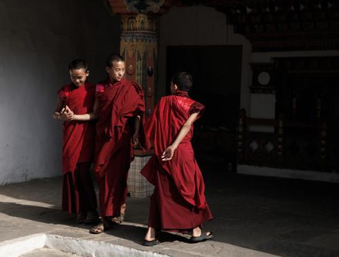 0042_monks_in_punakha_dzong_o.jpg