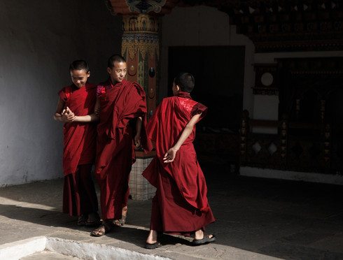 0042_monks_in_punakha_dzong_o.jpg