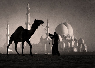 0055_Homage to Zayed.b.w.small.jpg
