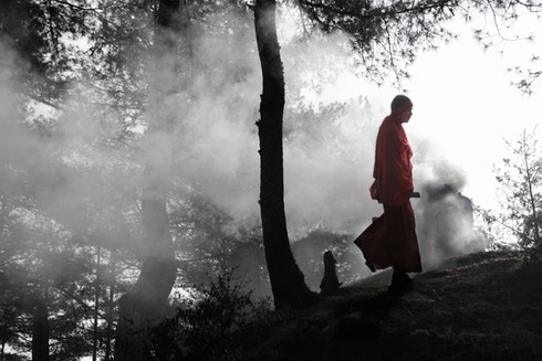 0031_monk_in_woodsganteybhutan_o.jpg