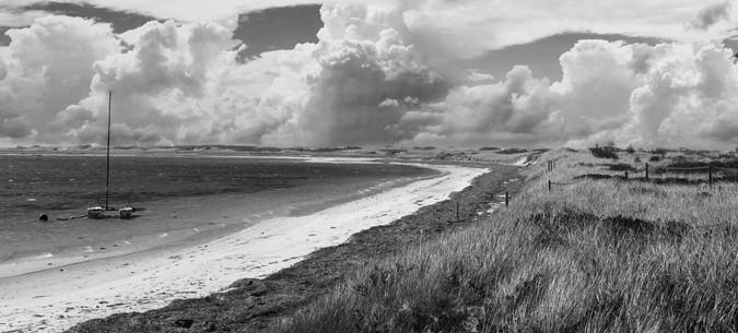 0042_Tash's Beach1b.w _small.jpg