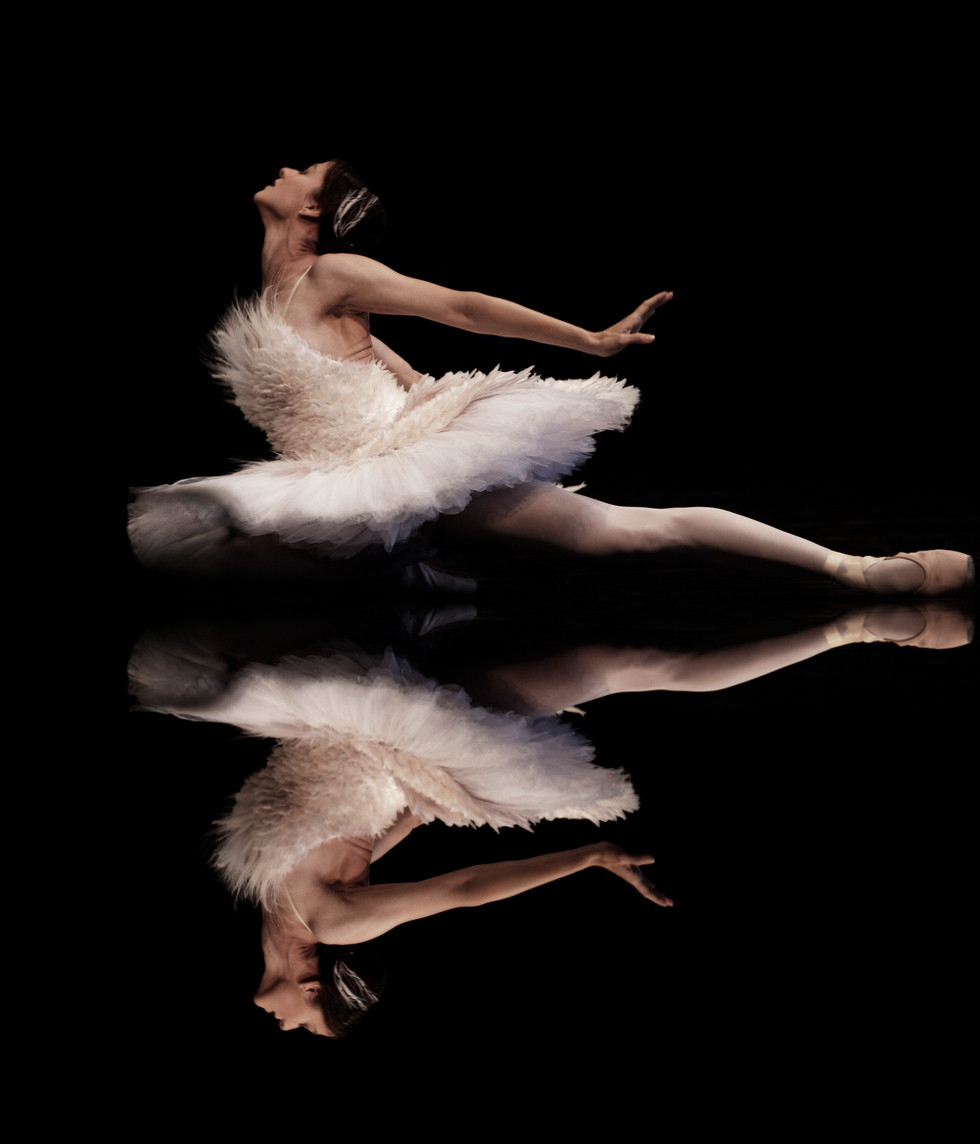 The Dying Swan