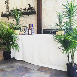 Tropical themed 50th Anniversary pool party