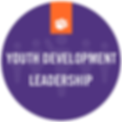 download-youth development leadership-#3