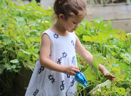 Green-Fingered Fun: 7 Things To Do In The Garden With Under 5s
