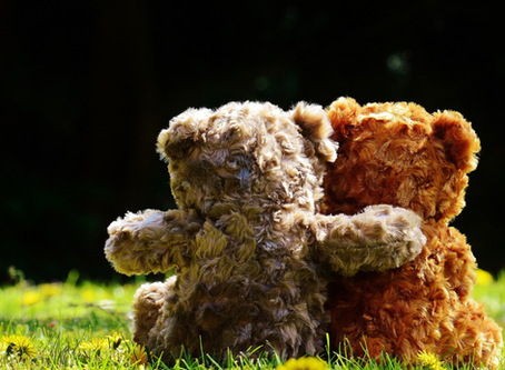 What To Pack For A Teddy Bear's Picnic