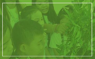 bacoor school, cavite school, students, private school, grade school