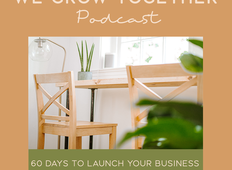 Ep. 25: 60 Days To Launch Your Business Framework - The Foundations To Starting a New Business