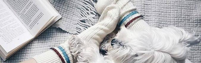 Статья о шерстянх носках в интерне-магазине носков Sock Club Moscow