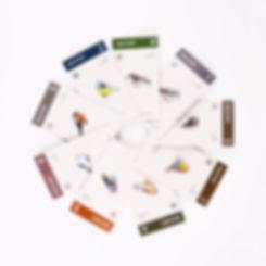 Circle Of Unity Bird Metal Enamel Pin Badges