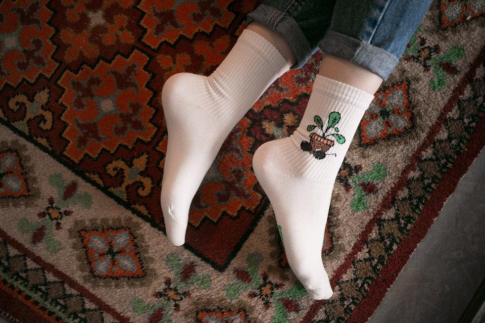 Носочки SUPER SOCKS леон