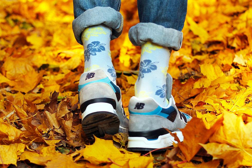 Носки Democratique Socks