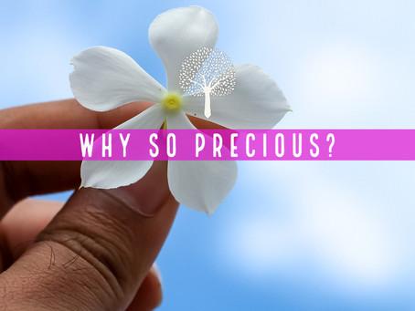 Why so precious?
