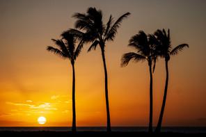 Hawaii-651.jpg