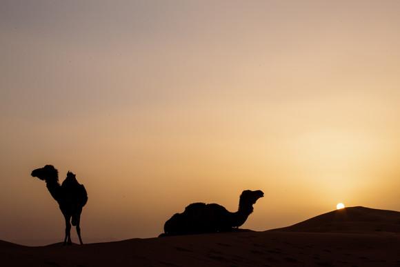 marokko524.jpg
