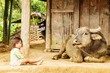vietnam909.jpg