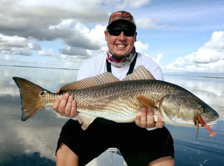 Florida Bay Redfish