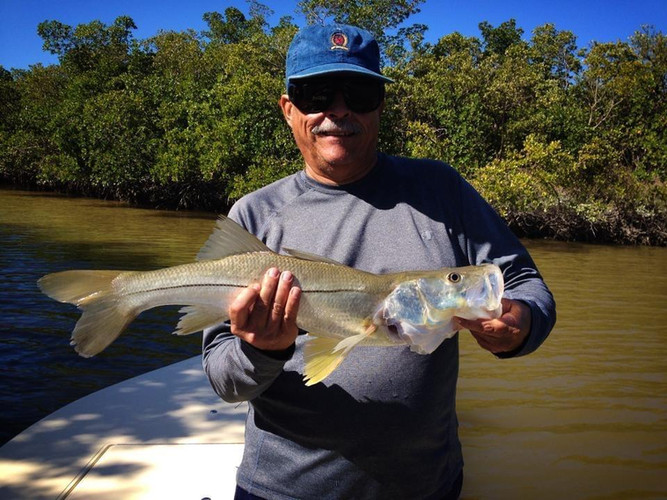 East Cape Snook