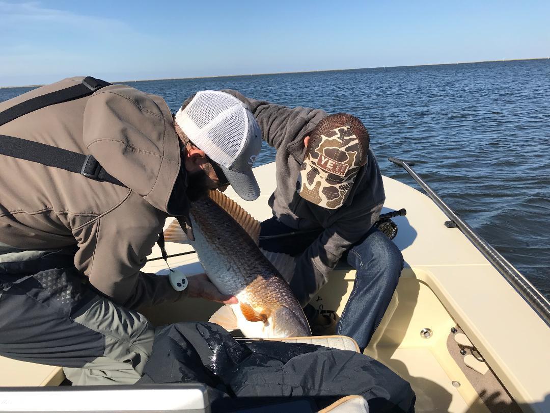 Louisiana Redfish Charters