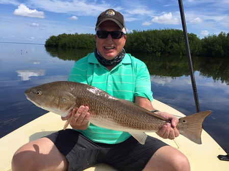 Everglades Redfish